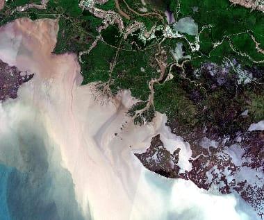 satellite image Louisiana