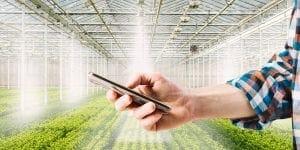 drip irrigations system
